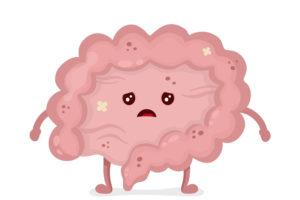 Deravé črevo a jeho regenerácia
